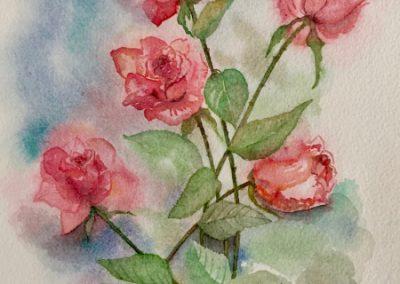Roses - Aquarelle - 2018