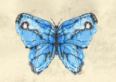 Blue Butterfly - Experimental Acrylic - 2016